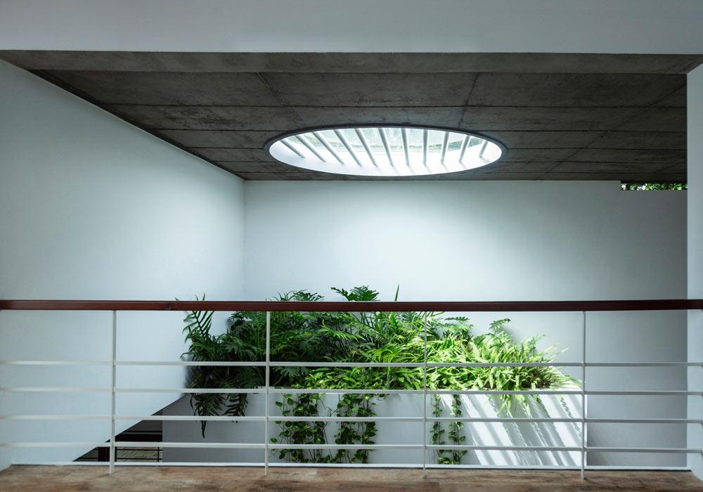 mẫu nhà ống hiện đại tràn ngập cây xanh và ánh sáng tự nhiên